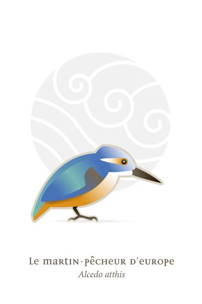 oiseaux_compil_8_oiseaux-01